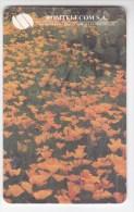 Romania   , Phonecard   , 1999 ,    Used - Romania