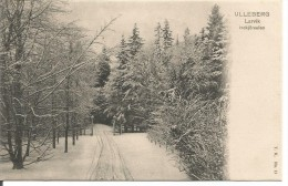 NOR.0024/ Ulleberg - Larvik - Indkjörselen