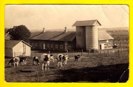 CARTE PHOTO FERME BOERDERIJ FARM BAUERNHOF FINCA GRANJA VACHE KOE COW KUH VACA MUCCA VACCA PAYSAN BOER FARMER BÄUR 3504 - Fermes