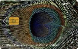CUBA 90 Pluma Pavo Real 30.000ex - Cuba
