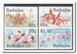 Barbados 1992, Postfris MNH, Flowers, Orchids - Barbados (1966-...)