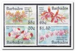 Barbados 1993, Postfris MNH, Flowers, Orchids - Barbados (1966-...)