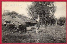 Une Ferme Annamite - Vietnam