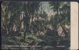 R497 ISLE OF WIGHT - LANDSLIP , NEAR SHANKLIN - Inghilterra