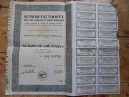 SURENNES Hauts-De-Seine ACTION De 100 F SEPROM-THERMONITE 1964 - Actions & Titres