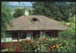 Iasi-Ion Creanga Museum-used,perfect Shape - Monuments