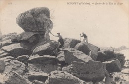 Cp , 29 , ROSCOFF , Rocher De La Tête De Singe - Roscoff