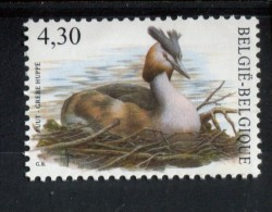 301764152 BELGIE POSTFRIS MINT NEVER HINGED POSTFRISCH EINWANDFREI OCB 3538 Fuut - 1985-.. Birds (Buzin)