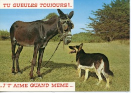 """Humour : Ane & Chien Berger Allemand """"Tu Gueules Toujours ! J't'aime...n°197 éd Artaud (animaux Anes Chien) - Ezels"""