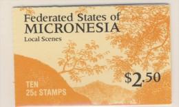 MICRONESIE 1985/88 CARNET COURANTS Sc N°36a NEUF MNH** - Micronésie