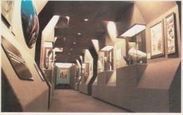 """Galería Histórica. Museo Salesiano """"Mayorino Borgatello"""" Punta Arenas, Magallanes, CHILE - Museos"""