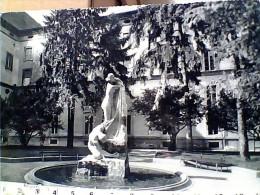 PARMA UNIVERSITA CORTILE E STATUA  VB1962 ER14563 - Parma