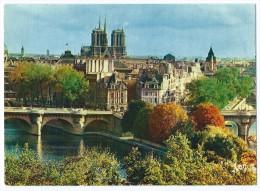 10/167 - PARIS (75) - Notre-Dame Et La Cité - Non écrite Dos Propre - Scan Recto-Verso - Notre Dame De Paris
