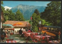 RIGI-SEEBODENALP SZ Küssnacht Seilbahn Restaurant Panorama-Bus - SZ Schwyz