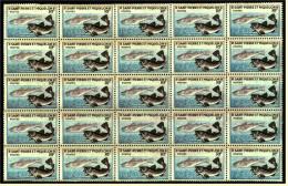 Bogen Ohne Rand  -  25 X St. Pierre Et Miquelon 1957 Kabeljau  -  Mi. Nr. 381** Postfrisch - St.Pierre & Miquelon
