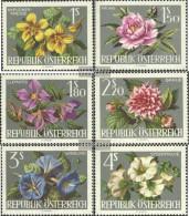 Österreich 1145-1150 (completa Edizione) MNH 1964 Garden Show - 1961-70 Nuovi & Linguelle