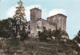 Francia--Perigueux--La Tour Blanche--Le Vieux Chateau-- - Castillos
