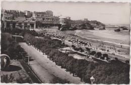 BIARRITZ EN 1953,PYRENEES ATLANTIQUES,PLAGE,CASINO, BELLE VUE,PHOTO BLOC,64 - Biarritz