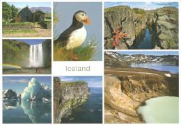 CPM ISLANDE MULTIVUE PUFFIN - Iceland
