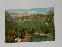 TRENTO - Tuenno - Lago Di Tovel - Dolomiti Di Brenta - 1965 - Trento