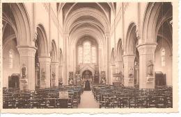 S103 - Ruisbroek - Binnenzicht Der Kerk - Non Classificati