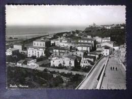 CALABRIA -COSENZA -PAOLA -F.G. LOTTO N°443 - Cosenza
