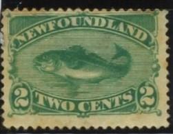 Newfounland. YT 36. - Prince Edward (Island)