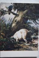 Pig And Raven -  Old USSR  Postcard. 1956 - Schweine