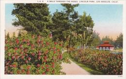 California Los Angeles A Walk Through The Roses Lincoln Park