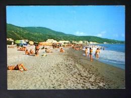 CALABRIA -CATANZARO -NOCERA TERINENSE -F.G. LOTTO N°444 - Catanzaro
