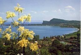 Lago Di Garda - Golfo Di Pieve E Rocca Di Manerba - 680 - Formato Grande Viaggiata - TI Tessin