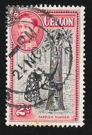 CEYLON - Scott #278 Tapping Rubber Tree Perf. 11x11½ (*)  / Used Stamp - Ceylon (...-1947)