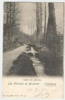 Nels Vallée Des Artistes  Tbre 53  Obl Linkebeek  (+300) - Linkebeek