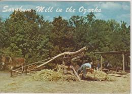 Sorghum Mill In The Ozarks - Campesinos