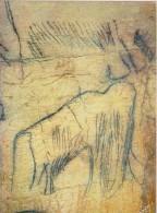 Cabrerets (Lot) - Antigüedad