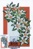 Australia 1986 Alpine Wildflowers 5c Alpine Marsh Marigold Maximum Card - Cartas Máxima