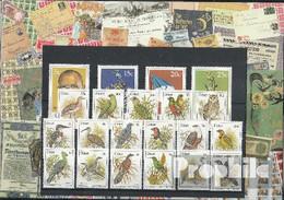 Südafrika - Ciskei 1981 Postfrisch Kompletter Jahrgang In Sauberer Erhaltung - Ciskei