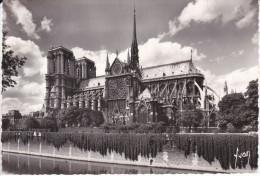 Francia--Paris--1966--Notre Dame---Cachet-Paris,  Bd .Arago - Notre Dame De Paris