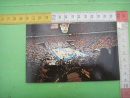 64)  Rupp Arena : Basketball : University  ; Wildcat .: Recto  Verso - Lexington