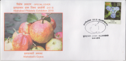 India  2015  Fruits  Guava  Of Allahabad Special Cover # 60123  Inde  Ind - Fruits
