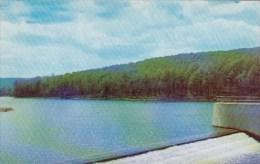 Pennsylvania Warren Chapman Dam - United States