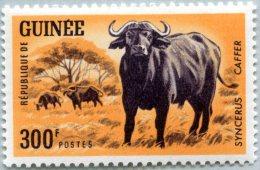 N° Michel 252 (N° Yvert 207) - Timbre De Guinée (République) (MNH) (1964)  - Buffalo De Africa (JS) - Guinée (1958-...)
