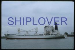 diapositive authentique cargo SPRING BEAR (r�f. D3953) - ship 35 mm photo slide - bateau/ship/schiff