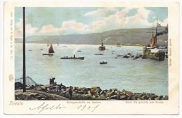 Trieste Navi Da Guerra In Porto - Kriegsschiffe Im Hafen - HP804 - Trieste (Triest)