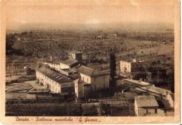 """PERUGIA --DERUTA -- FABBRICA MAIOLICHE  """" G. GRAZIA """" -- - Perugia"""
