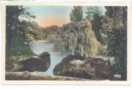 DOUAI (Nord) - Les Rochers Et Le Lac Du Jardin Public - Douai