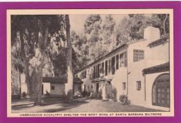 CA118  Umbrageous Eucalypti Shelter, West Wing, Santa Barbara Biltmore, California, CA, Vintage Postcard.