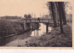 MEERSELDREEF : De Kemelsbrug ( 2 Timbres) - Hoogstraten