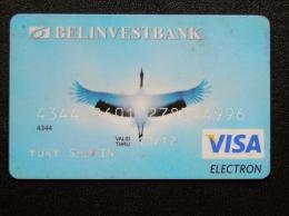 Bank Card From Belarus VISA Balinvestbank Bird Oiseaux Stork - Belarus