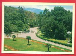 163369 / Crimea LIVADIA Palace - PARK GARDEN Was A Summer Retreat Of The Last Russian Tsar, Nicholas II - UKRAINE - Ukraine